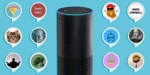 What Can Amazon Echo Do