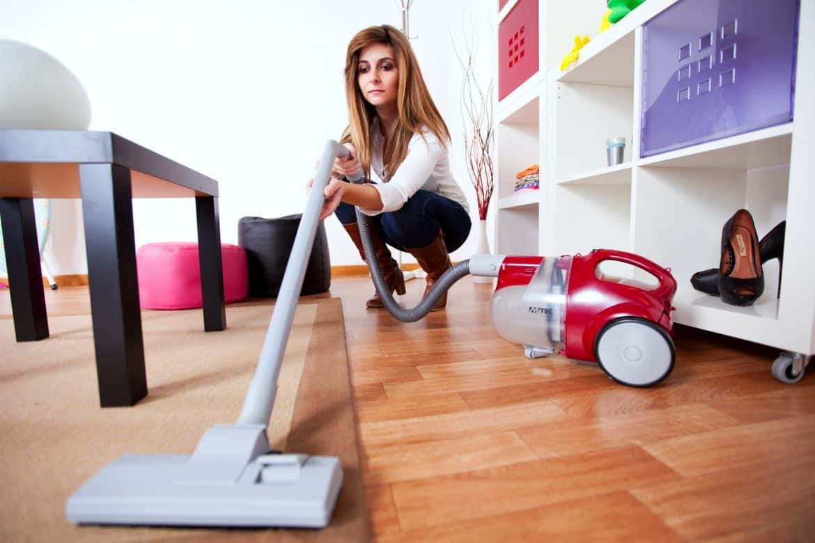 Woman With A Canister Vacuum