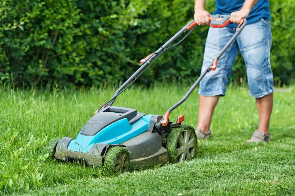 Man Mowing Yard