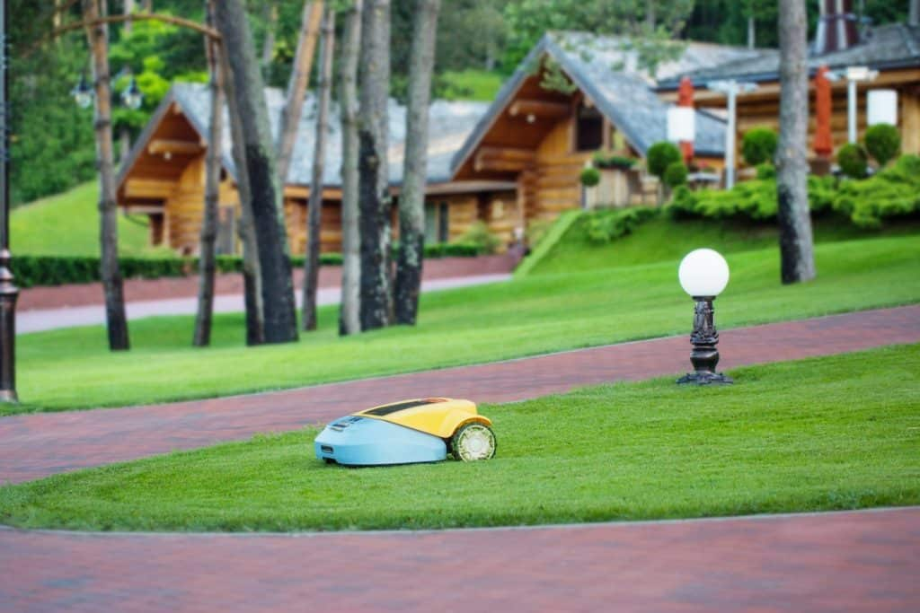Robotic Mower on a Lawn