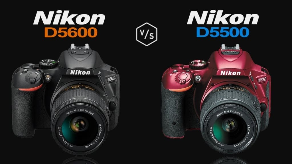 D5500 and D5600