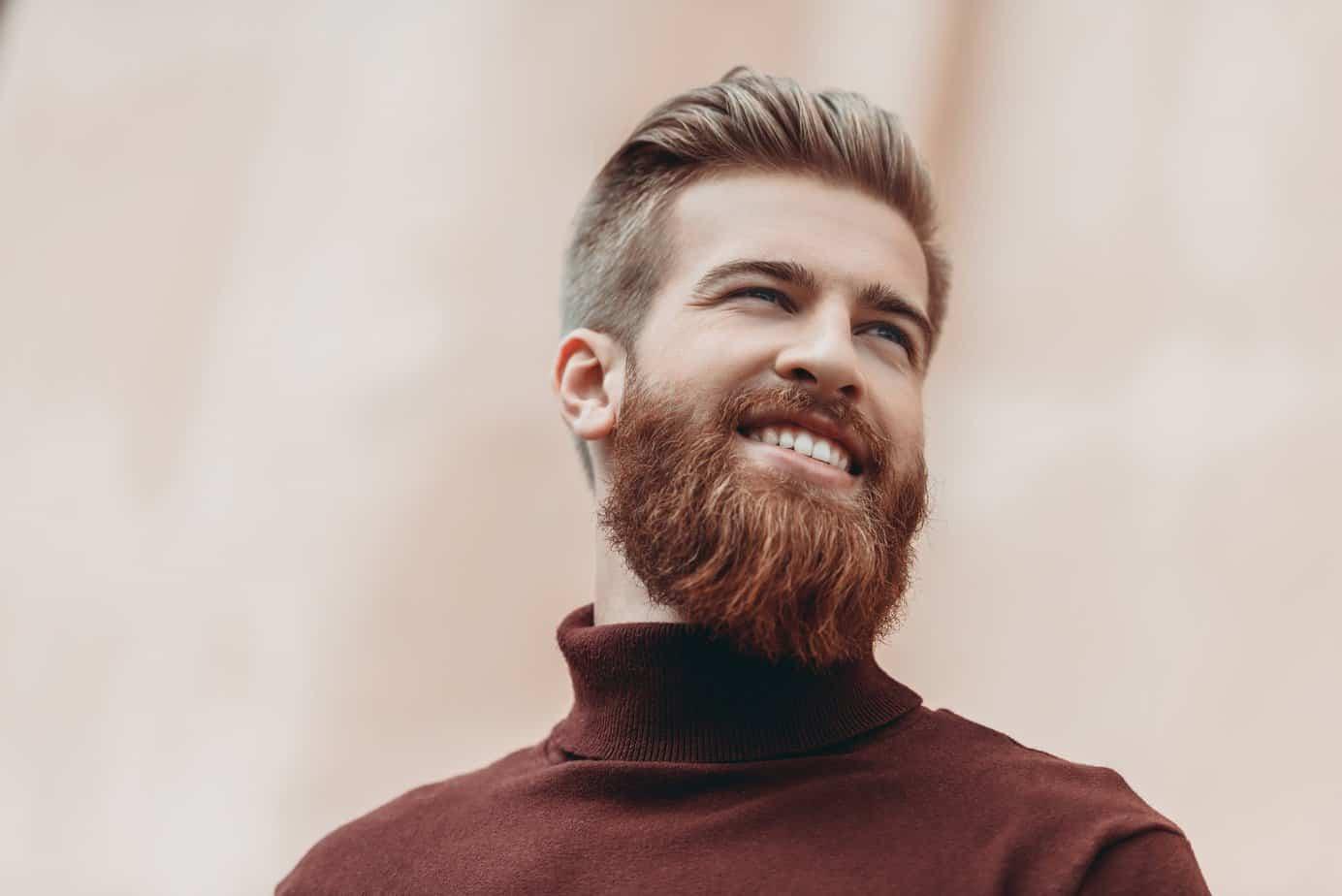 Beard Straightener Review WiredShopper