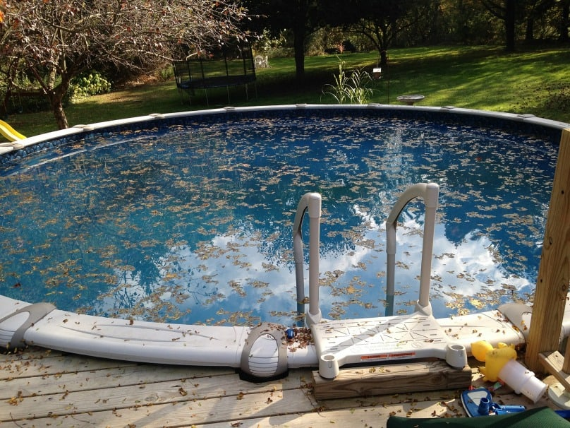 Top 5 Best Robot Pool Cleaners
